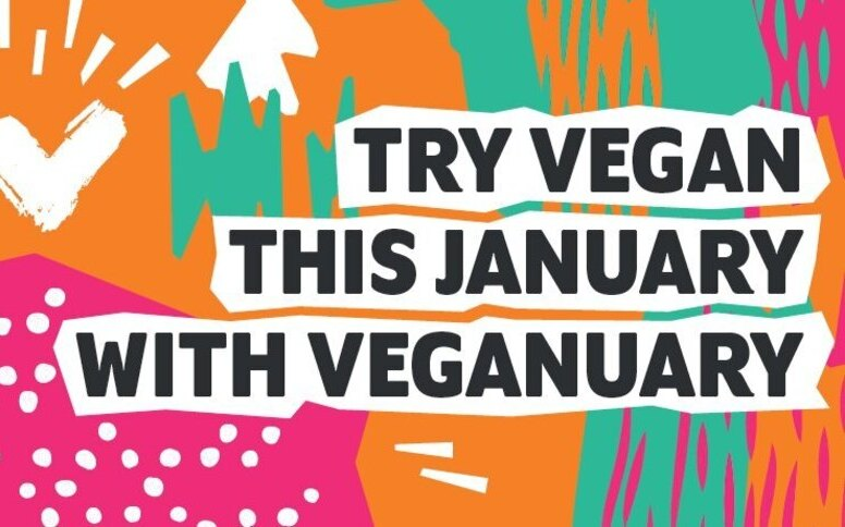 Veganuary Edit: Veganism is here to stay!